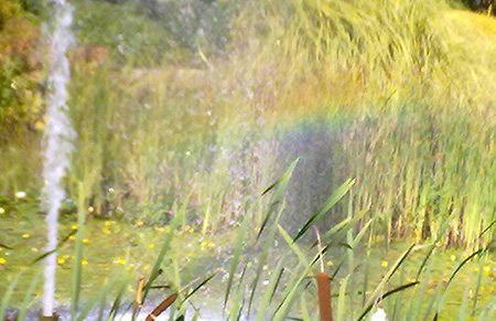 A rainbow in the fountain
